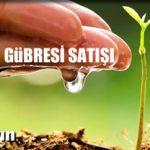 Türkiye yılda 30 bin ton solucan gübresi üretiyor