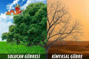 Tarımsal Sözlük